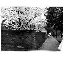 Brick Wall - B&W Poster