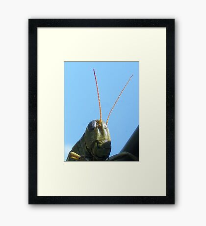 'Hello Framed Print