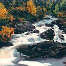Fall Falls by Brian Carey