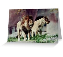 Lion Mates-223 views, 6 comments (Resubmitt) Greeting Card