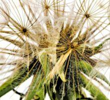 Dandelion Fluff Sticker