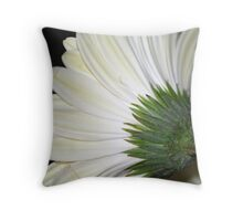 I'm not looking at you! Throw Pillow