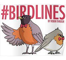 #Bird Lines Poster
