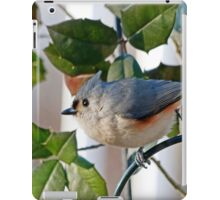 Titmouse iPad Case/Skin