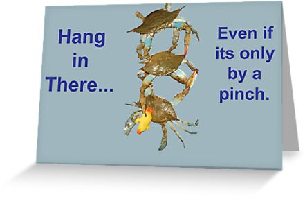 Hang in There... by Angel Perry