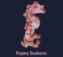 Pygmy Seahorse by Andrew Trevor-Jones