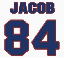 National football player Jacob Tamme jersey 84 by imsport
