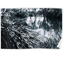 Textures at the Lake Poster