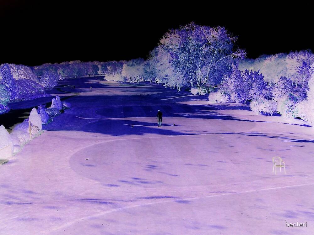 Midnight stroll by becteri
