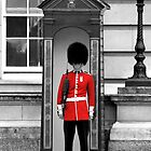 Buckingham Palace Guard by Graham Taylor