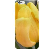 Butter Yellow iPhone Case/Skin