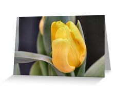 Butter Yellow Greeting Card