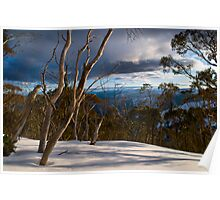 Snow View Poster