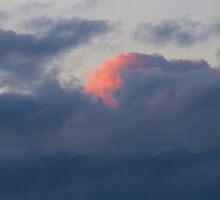 An Angel Blushing....... by Larry Llewellyn