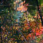 Reflection Serenade by MarianBendeth