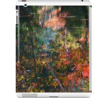 Reflection Serenade iPad Case/Skin
