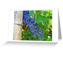 Cowra Grapes Greeting Card