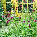 Squirrel House Gardens by Marilyn Cornwell