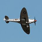 Spitfire by Graham Taylor