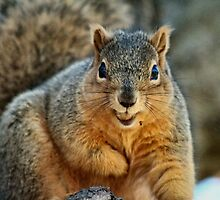 I Don't want to smile too wide...I'll drop my nut! by MoreKeala