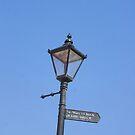 Abbey Signpost by Jenn Ridley