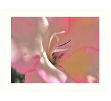 Pink Flowers - Gladiolus Flirting Art Print