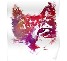 Purple kitty Poster