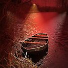 Into the red spotlight. by alaskaman53