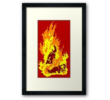 The Self-Immolation of Thích Quảng Ðức Framed Print