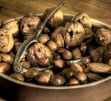 We're all nuts #2 by craig sparks