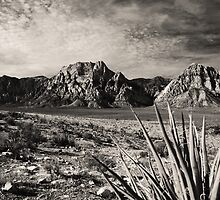 Red Rock in Selenium by Benjamin Padgett