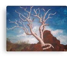 Ancient Tree Canvas Print