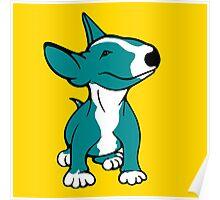 English Bull Terrier Pup Teal/ Aqua Poster