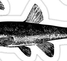 Black Fish Sticker