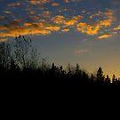 Days End..... by Larry Llewellyn