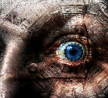 The marvellous human eye by craig sparks