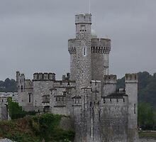 Blackrock Castle by David O'Riordan
