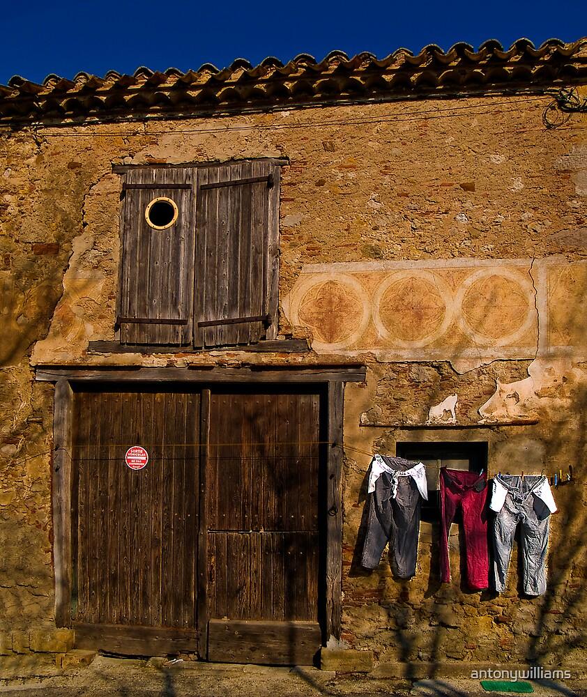 La maison de cercles..... by antonywilliams
