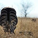 ~Rear View!~ by Susan van Zyl