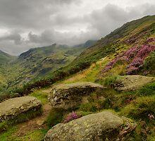 Grisedale 2  by Stewart Laker