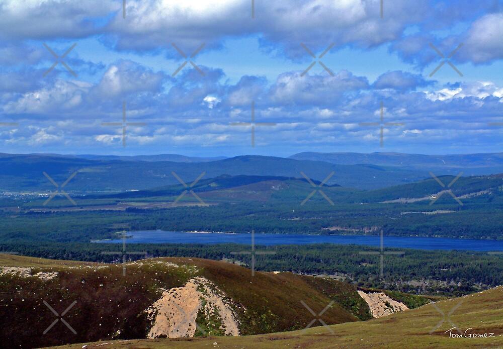 Cairngorm view II by Tom Gomez