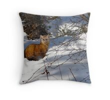 "Pine Marten  aka,Sable, ""You Can't See Me"" Throw Pillow"