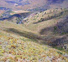 The Valley Of Haria................................Lanzarote by Fara