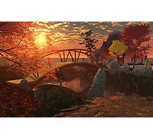 Japanese garden Photographic Print