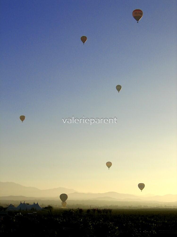 Champagne Tour by valerieparent
