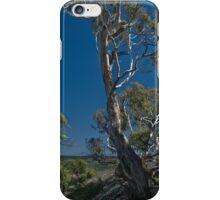 Evans Gum iPhone Case/Skin