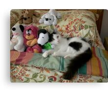 Catalina among the toys Canvas Print