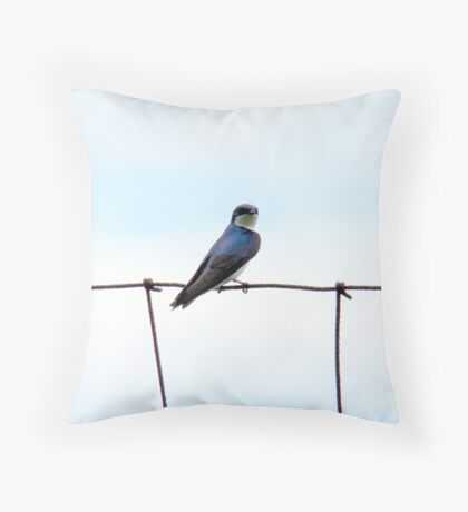Swallow on a wire fence Throw Pillow