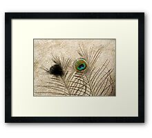 "The Peacock Dude! ""I'm Being Followed!"" Framed Print"