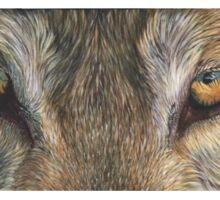 Wolf Eyes (2) T-shirt Sticker